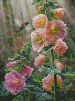 Roses trémières et oiseau mouche