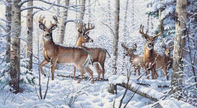 Les bois en hiver