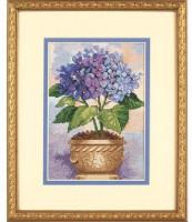 Floraison d'hortensia