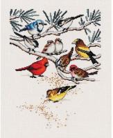 Un peu de nourriture pour les oiseaux