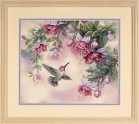 Oiseau-mouche et fuschias