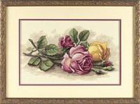 Roses coupées