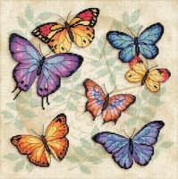 Profusion de papillons