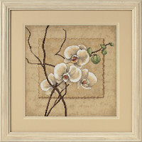 Orchidées orientales