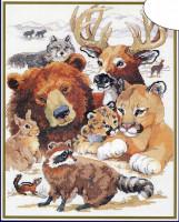 Vie sauvage nord américaine