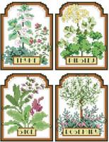 Aromatiques à semer