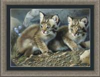 Bébés lynx
