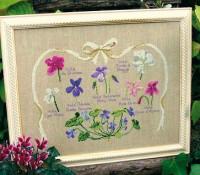 Planche botanique de violettes