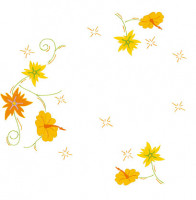 Napperons fleurs pétillantes