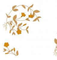 Napperons fleurs simples