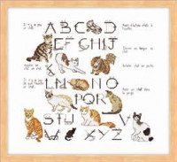 Expressions de chats