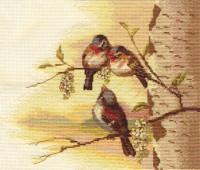 Chant d'oiseau au printemps