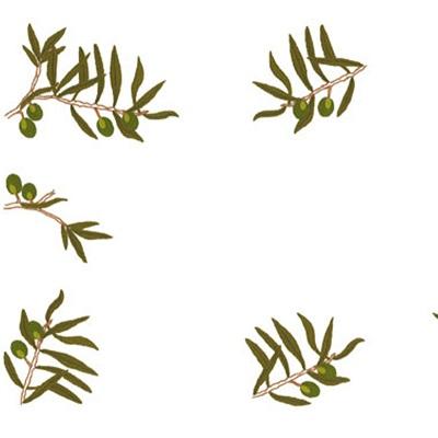 Napperons branche d'olivier